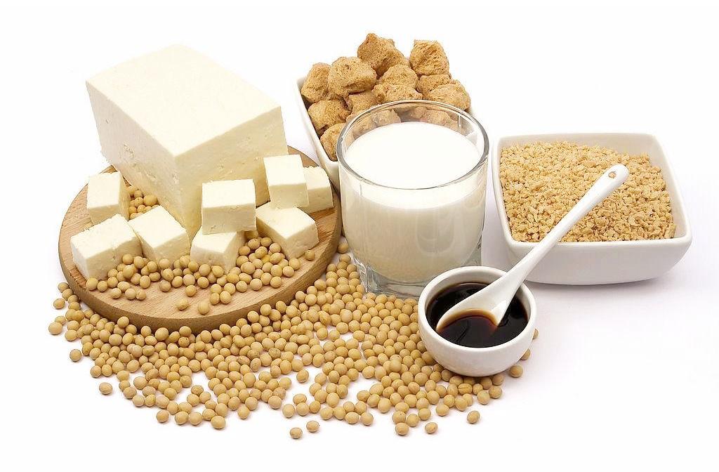 素食 蛋白質